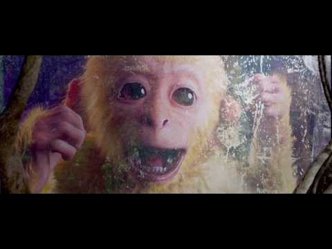 (HD) A lenda do rei macaco: 2017 720p dublado