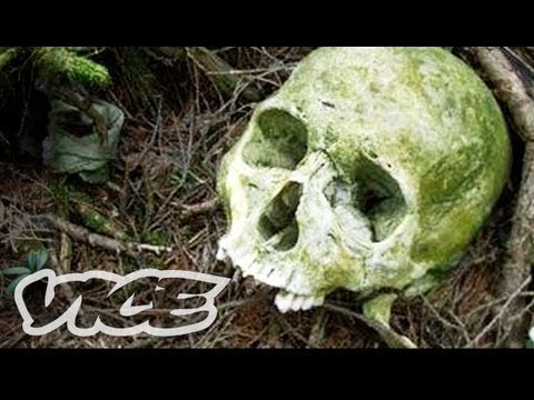 (HD) Suicide forest in japan (full documentary)