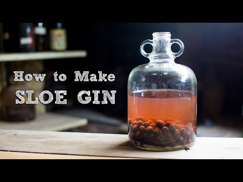 (New) How to make sloe gin - simple and amazing | food it yourself