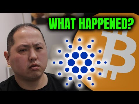 (New) What happened to cardano e bitcoin?? important lesson for noobs!!
