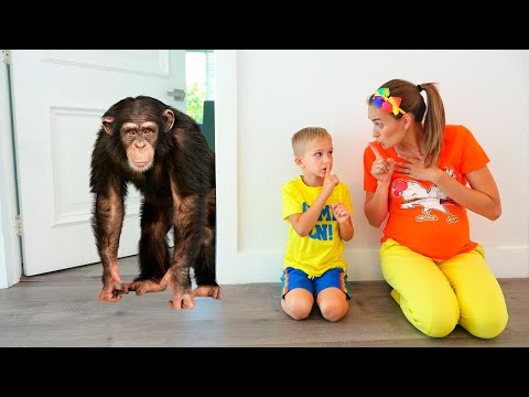 (Ver Filmes) Vlad and niki want new pet | funny stories for children