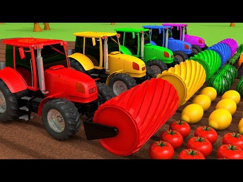 (Ver Filmes) Harvesting fruits and vegetables with tractors learn colors for kids children | zorip