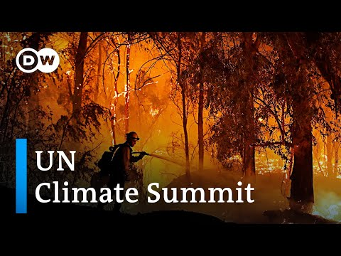 (New) Un warns of point of no return at the 2019 climate summit in madrid   dw news