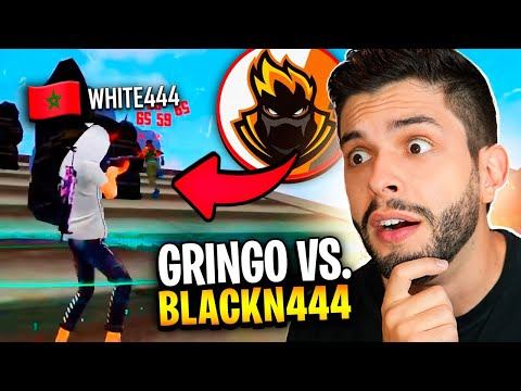 (New) Playhard reagindo ao x1 do blackn444 vs. gringo!! free fire