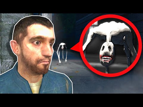 (New) Anxious dog is trying to eat us! - garrys mod gameplay