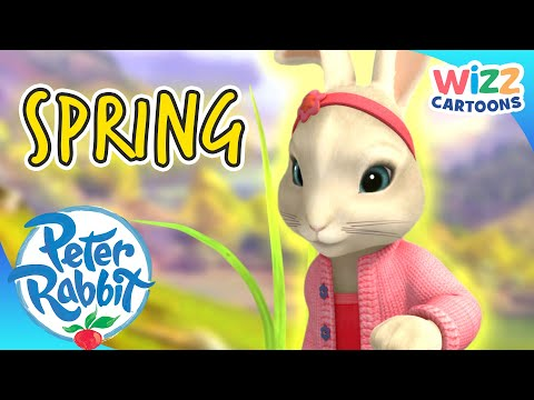 (New) @peter rabbit - the arrival of spring 🌱 | action-paced adventures! | wizz cartoons