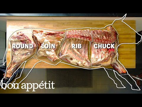(HD) How to butcher an entire cow: every cut of meat explained | bon appetit