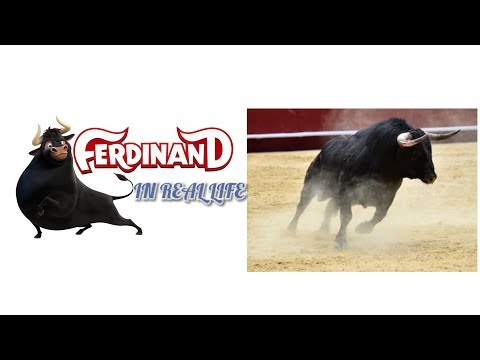 (New) Ferdinand: all characters in real life