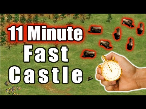 (New) 11 minute castle time on black forest!?