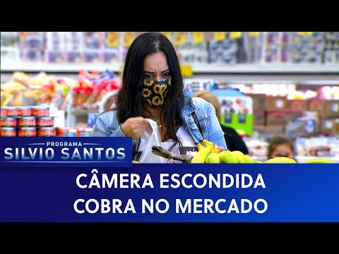 (New) Cobra no mercado - snake in the grocery store | câmeras escondidas (03 01 21)
