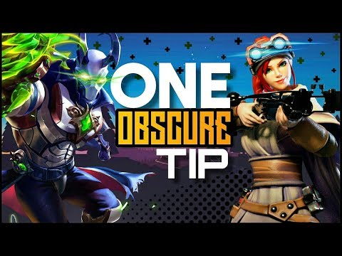 (New) One obscure tip for every champion in paladins