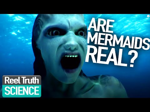 (HD) Mermaids the body found: are mermaids real? | mermaid science fiction programme | reel truth science