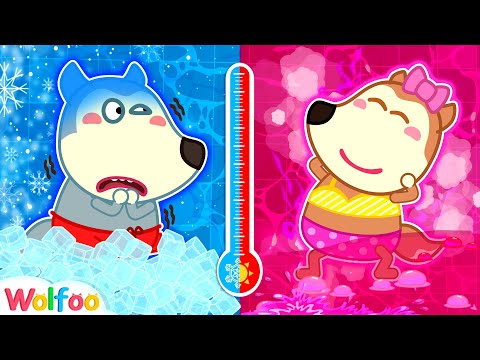 (VFHD Online) Hot vs cold bath - wolfoo learns healthy habits | wolfoo family kids cartoon